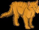 .:Lionblaze:. TC