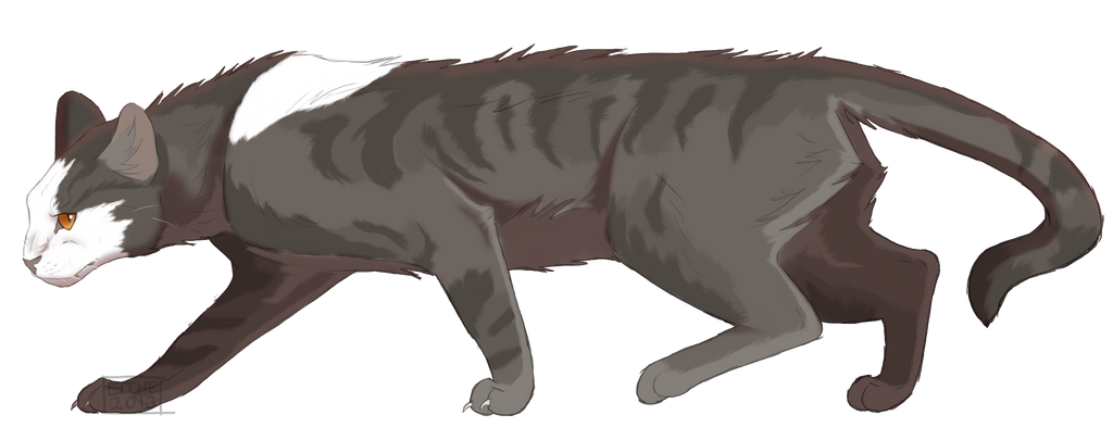 Warrior Cats Dark Claw