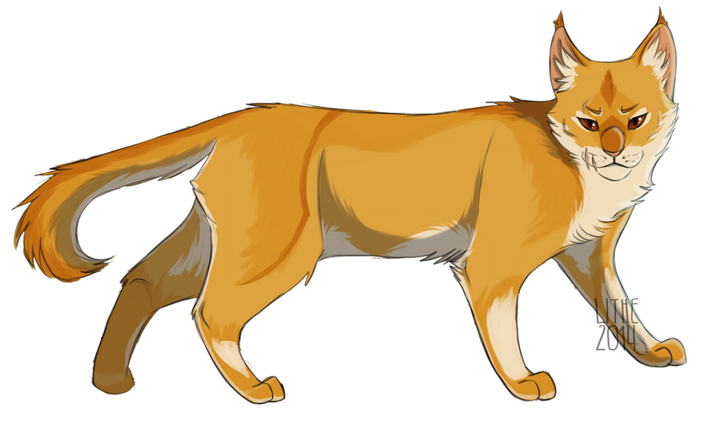 Warrior Cats Gingerleaf
