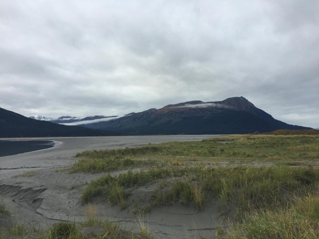 Alaska Stock, Turnagain Arm