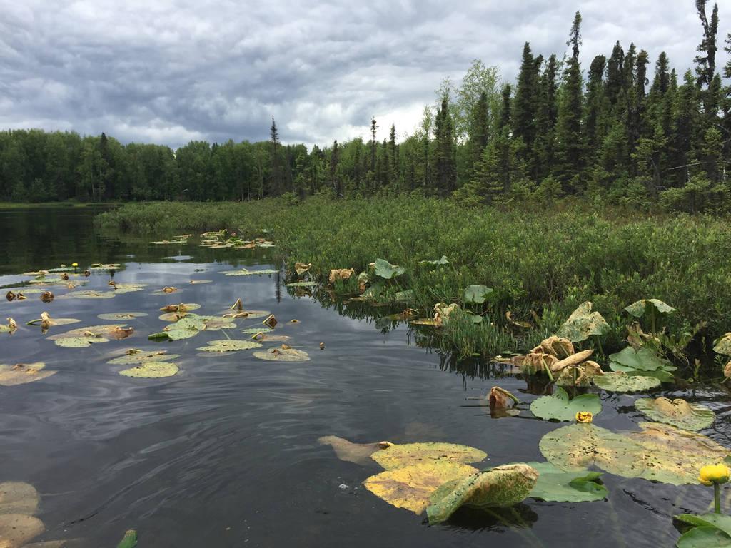 Alaska Stock, Bumble Bee Lake by audreystocks