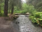Alaska Stock, Winner Creek by audreystocks