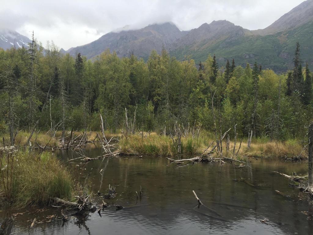 Alaska Stock, Eagle River/ Crow Pass Trail by audreystocks