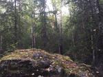Alaska Stock, Eagle River/ Crow Pass Trail