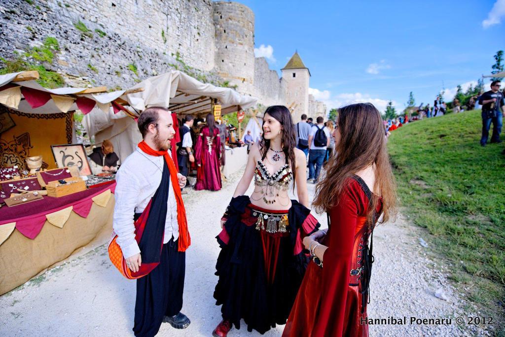Les Medievales de Provins 2012 by LadyAzurFromAlkemya
