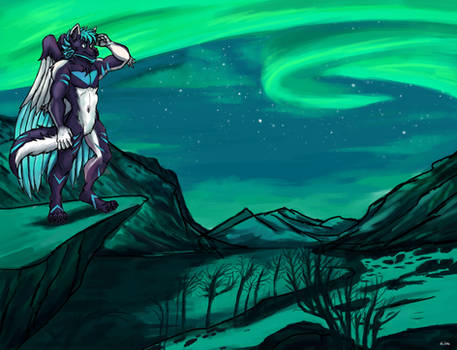 Northern Lights - Commission