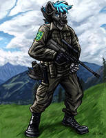 Type 57 the Soldier - Commission