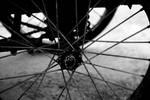 Wheel of life by lacusonline4