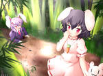 Touhou Inaba Tewi and Udonge