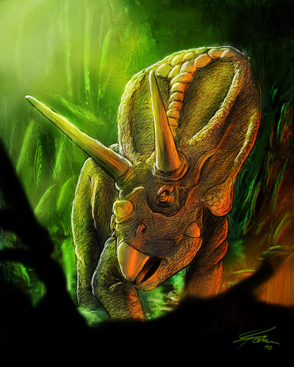 Triceratops by LovesTheMuffin