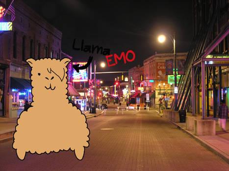 Llama Emo
