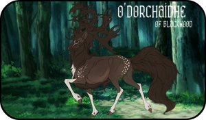 O'Dorchaidhe| Stag| Blackwood Witch | RPC