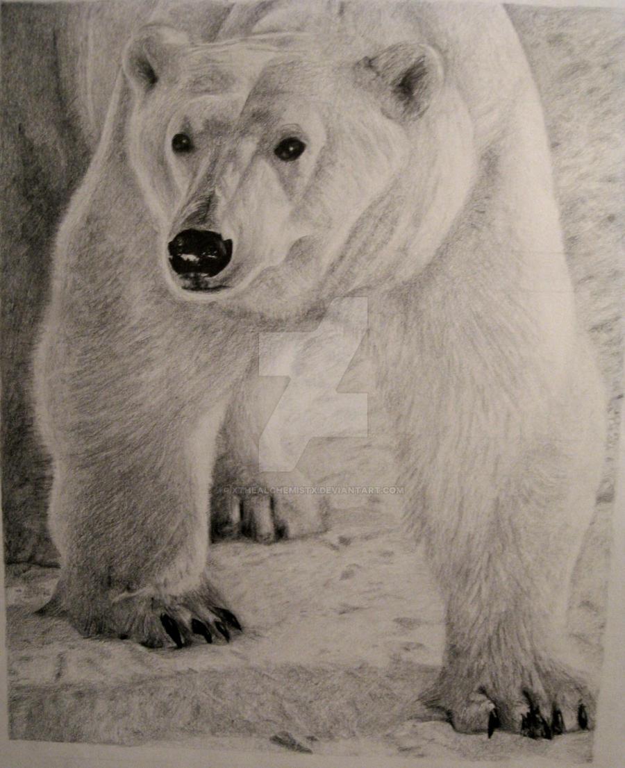 xthealchemistx polar bear in a snow storm by xthealchemistx