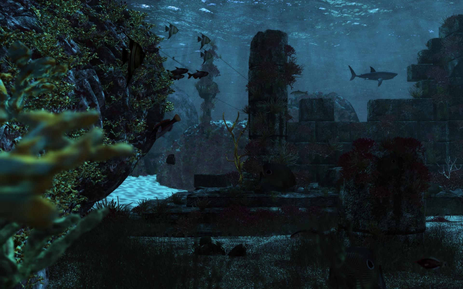 The reef by Klontak