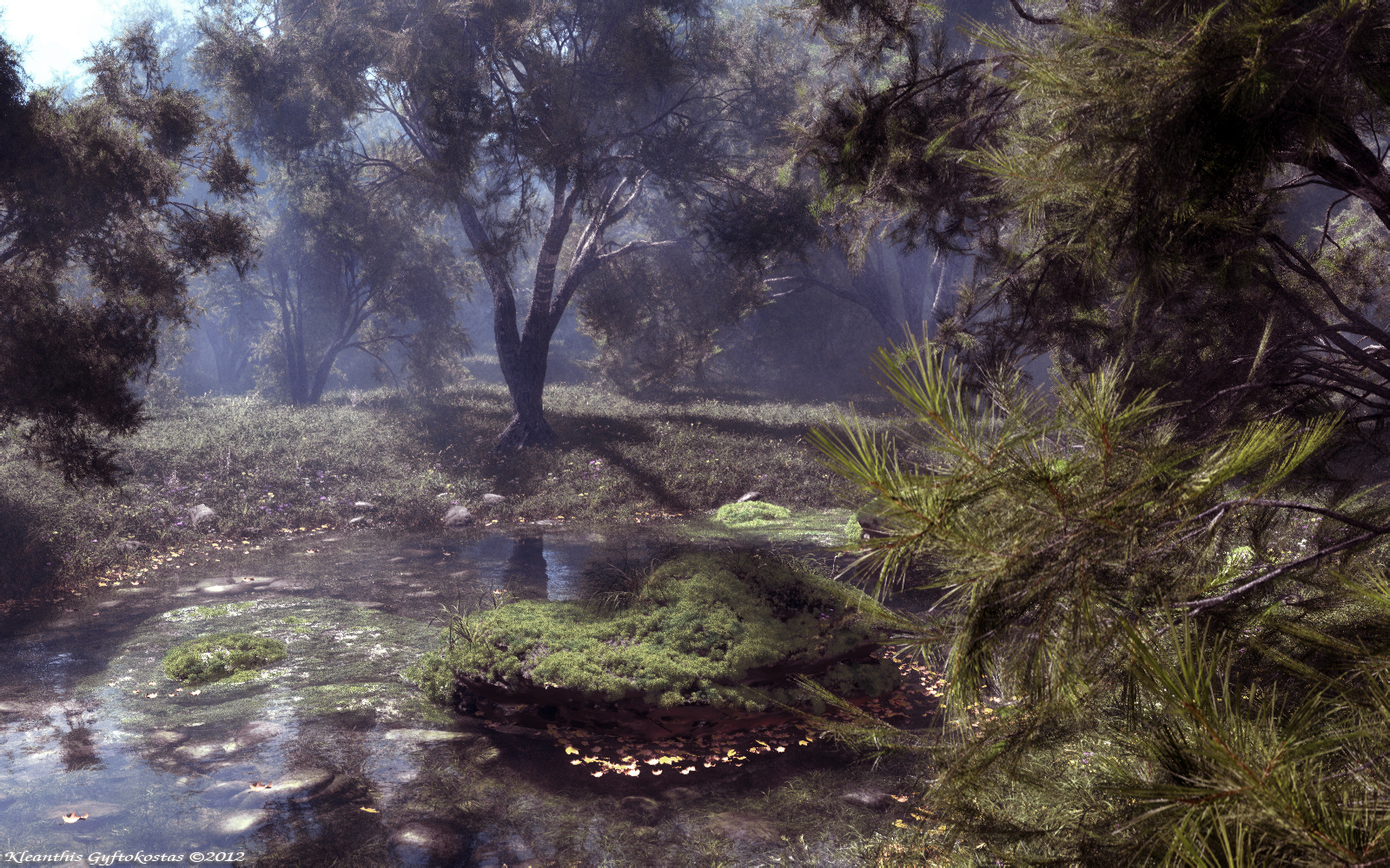 The pine forest pond