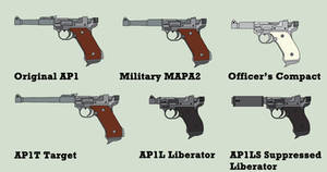 FSG AP1 Automatic