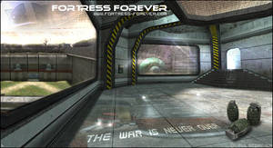 Fortress Forever- Steam Skin -