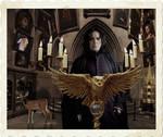 Severus director