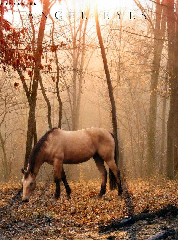 ^ Twilightstars ^ horses Horse_and_Water_by_hannahbanana91