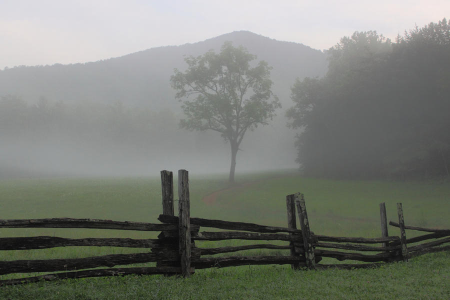Misty Morning Mountain by sassybikerchic