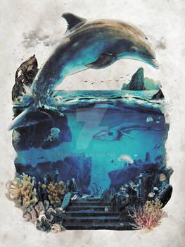 Ocean Dolphin Surreal