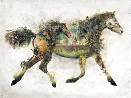 Surreal Horse