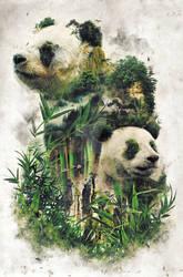 Surreal Panda