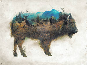 Surreal Bison
