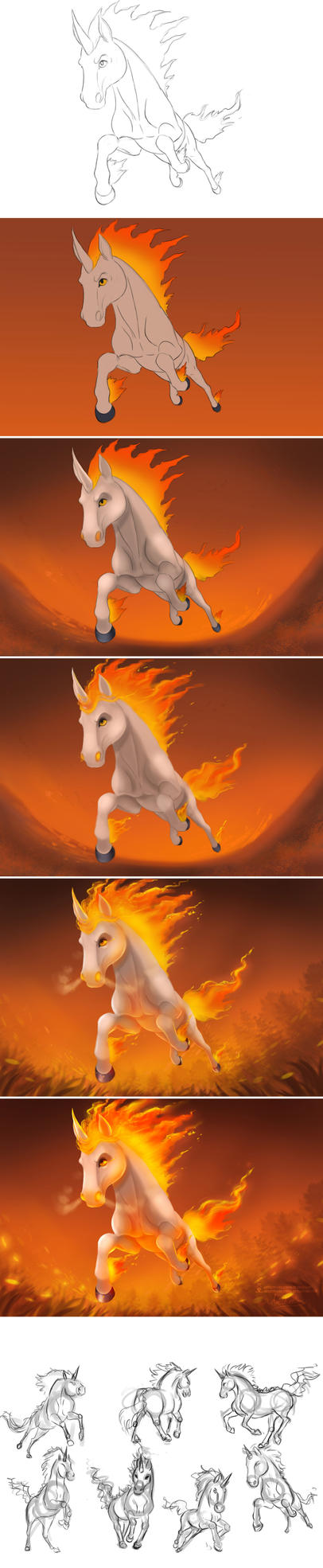 Rapidash Process + Sketches by ArtKitt-Creations