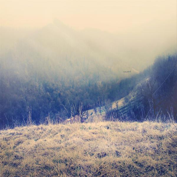 the mist by AlmAArietis