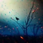 sunken. by AlmAArietis