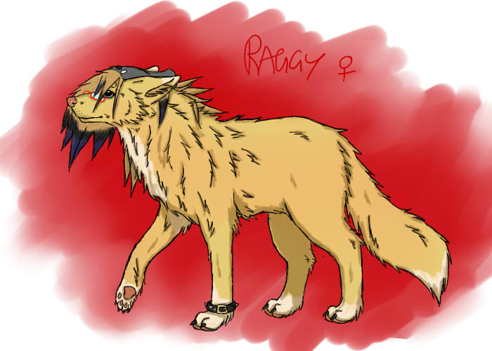 RaggedDreams's Profile Picture
