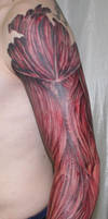 arm with muscle tissue3 Tattoo