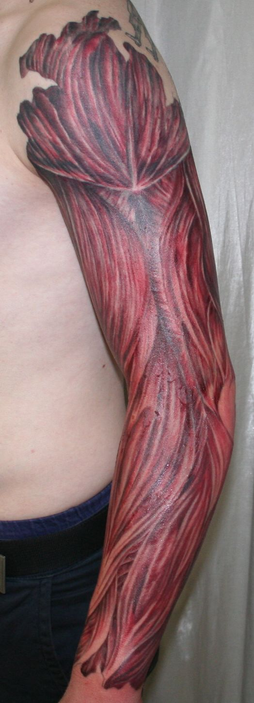Muscle Tattoo Sleeve: Arm With Muscle Tissue3 Tattoo By 2Face-Tattoo On DeviantArt