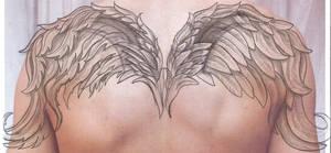 Angel Wings Cover TaT Design