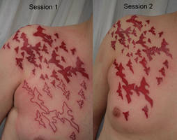 Session Red bats Tattoo by 2Face-Tattoo