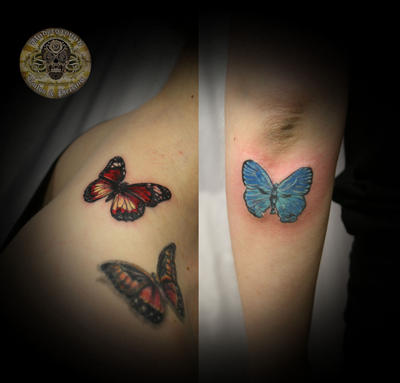 Pics Of Butterflies To Color. Color Butterflies
