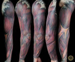Muscle Armsleeve TaT finish