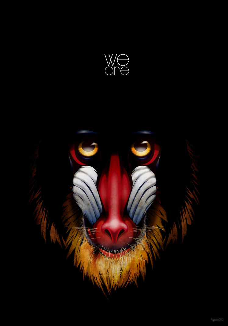 Mandrill by Raphooo2014