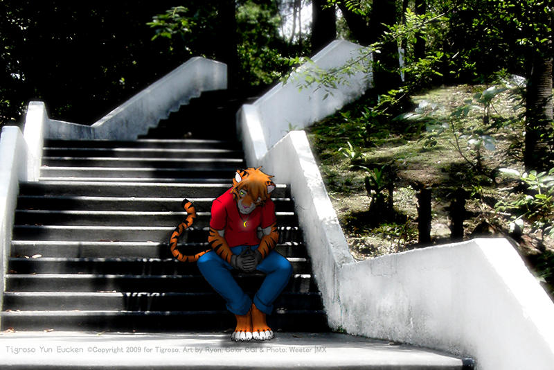 Thoughtful Yun Stairs version