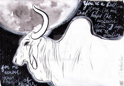 Zebu by RagAragno