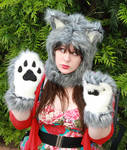 Custom Grey Wolf Dog Hood and Paws