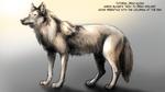 Wolf Pose Practice (Aaron Blaise Tutorials)