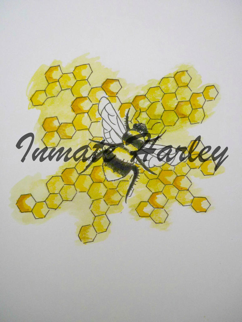 Water colour bee and honeycomb by InmateHarley