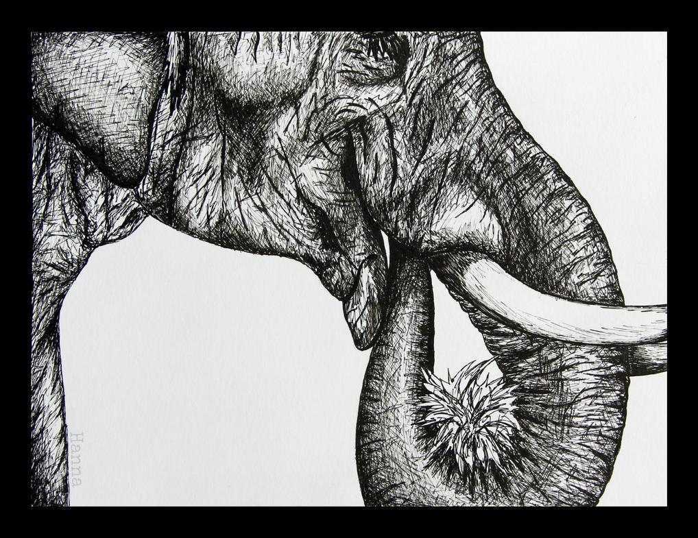 Elephant by ADHD-art