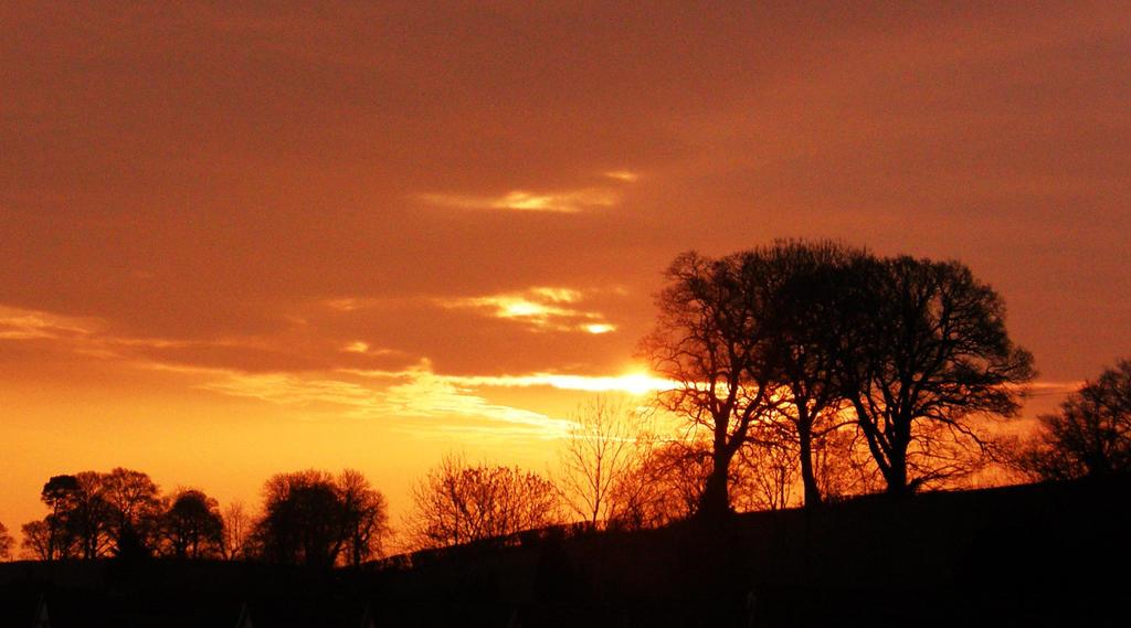 Sunrise in Kerry Vale by purple-whirlpool