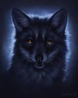 .: Still scared of the dark? :. by CopiaTheWolf