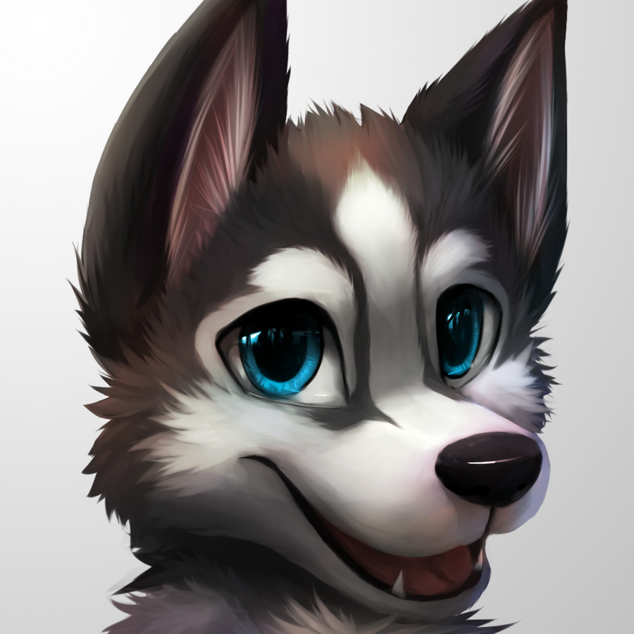 [iconcm] Kwakuhusky By Thanshuhai