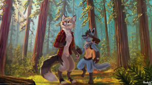 [C] A Redwood Stroll