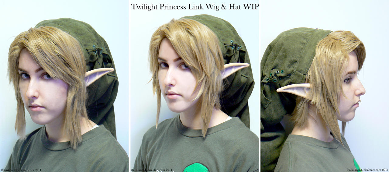 Link Cosplay Wig 16